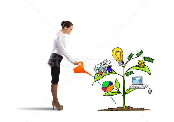 Stock photo: Make your income grow
