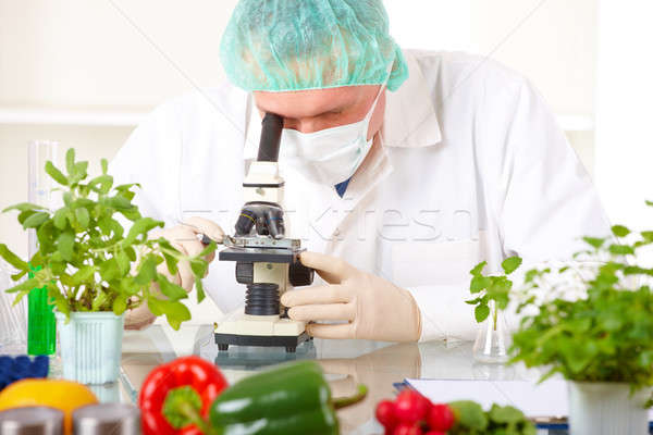 Stock photo: Researcher with microscope with a GMO vegetables in the laborato