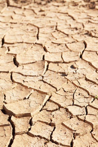 Stock photo: Dry cracked mud in dried up waterhole