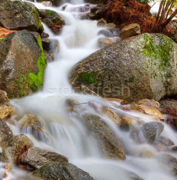 Stock photo: Frothy mountain stream