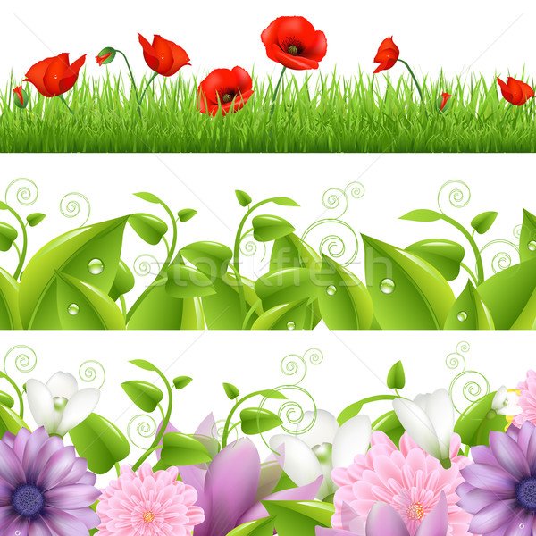 Stock photo: Borders With Flowers And Grass
