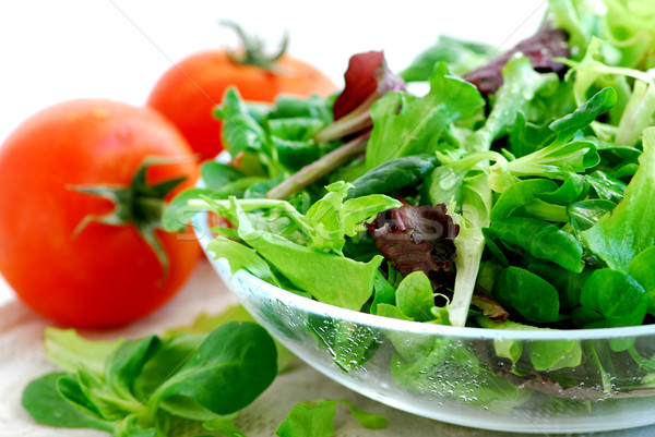 Stock photo: Baby greens and tomatoes