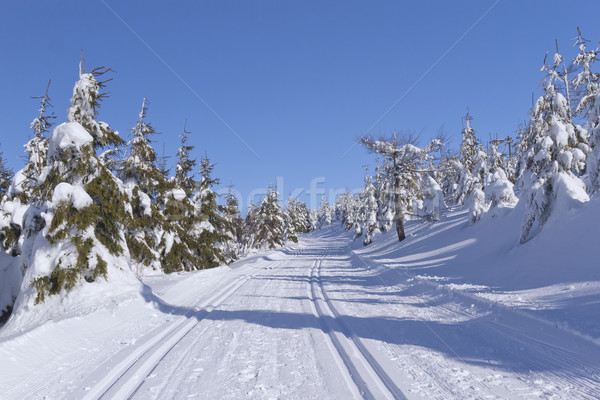 Stock photo: Winter mountain landscape with cross country skiing way.