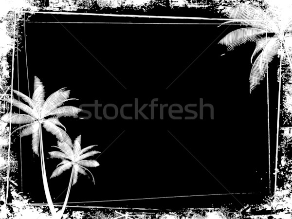 palm trees background. Stock photo: grunge palm tree