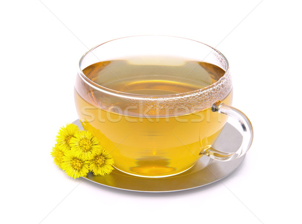 Stock photo: tea Coltsfoot 01