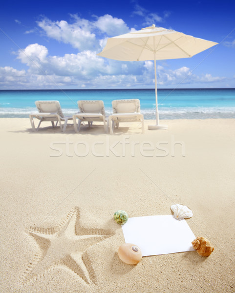 Stock photo: Caribbean beach sea blank copy space starfish shells