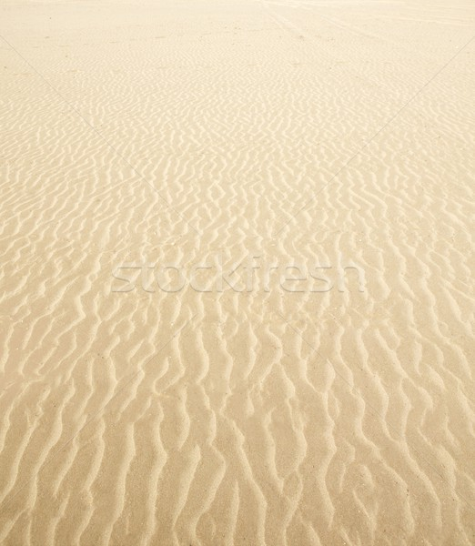 Stock photo: Beach sand waves warm texture background