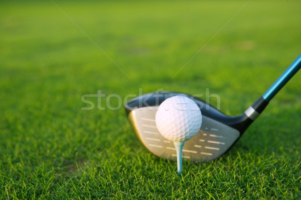 Stock photo: Golf tee ball club driver in green grass course