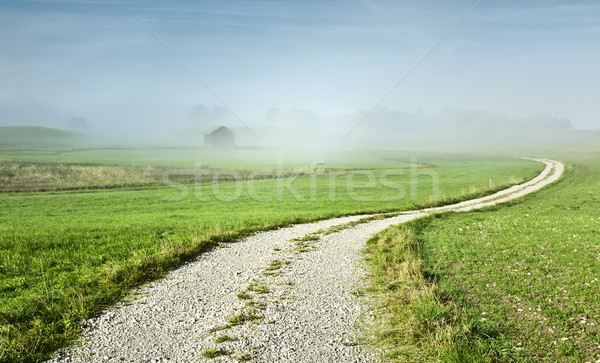 Stock photo: misty