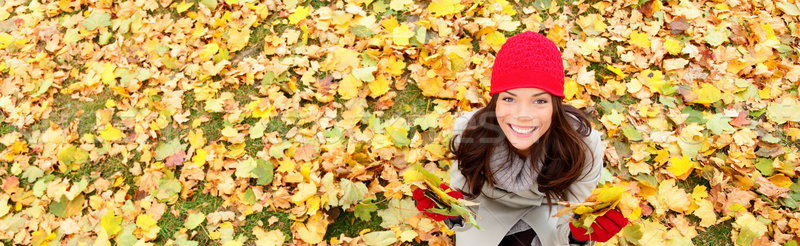 Stock photo: Autumn / fall banner background texture woman
