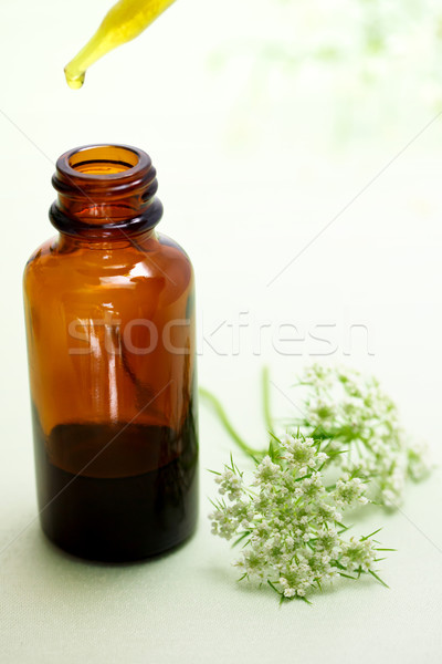 Stock photo: Herbal medicine with dropper bottle
