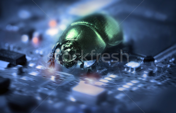 Stock photo: Bug on a computer chip