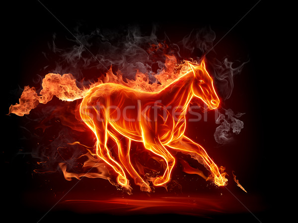 Stock photo: Hot stallion