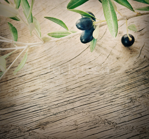 Stock photo: Olive branch on wooden background