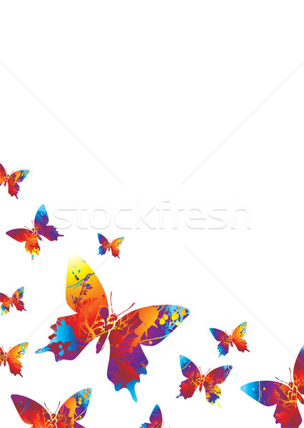 Stock photo: white bright butterfly