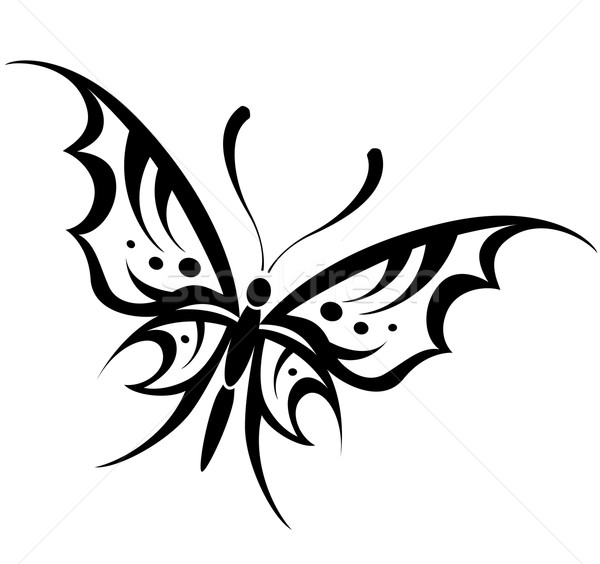 Vector Butterfly Drawing Illustration Francois