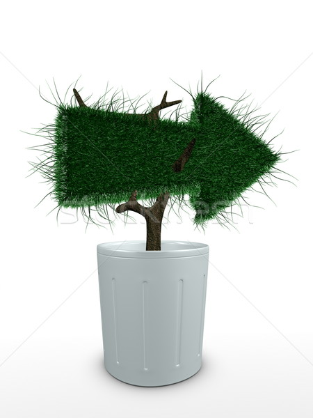 Stock photo: Bonsai arrow-right