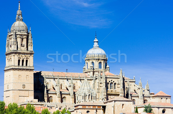 Stock photo: Salamanca, Castile and Leon, Spain