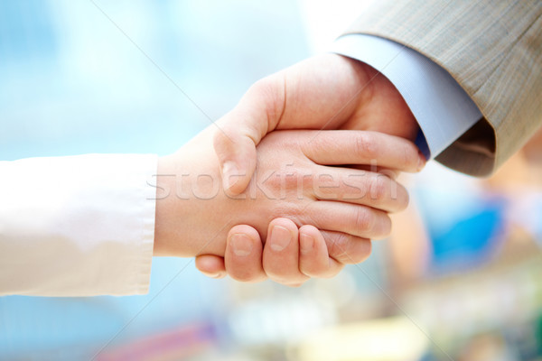 Stock photo: Successful deal