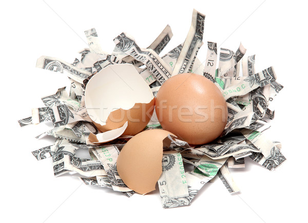 Stock photo: nest made of shredded dollar bank notes and broken eggshell
