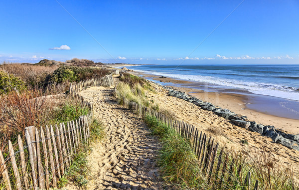 Footpath between wooden fences on the Atlantic Dune in Brittany, in north-west of France.