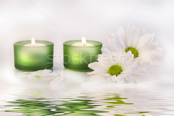 Stock photo: Green candles and daisies near water reflection