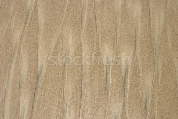 Stock photo: Beach Sand Background