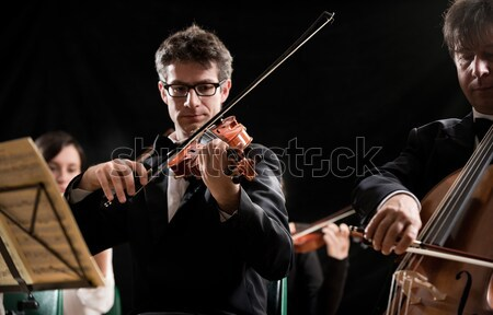 Violinists playing at the concert, rear view