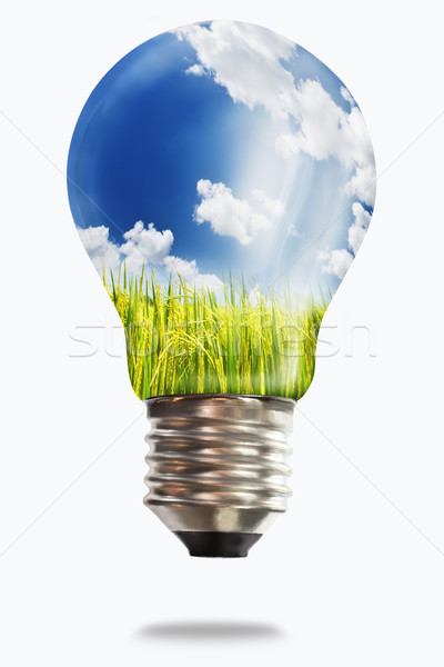 Stock photo: light bulb with paddy rice