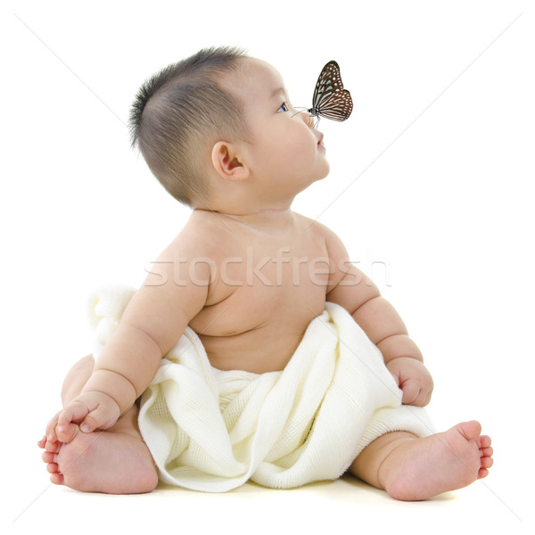 Stock photo: I see a butterfly!