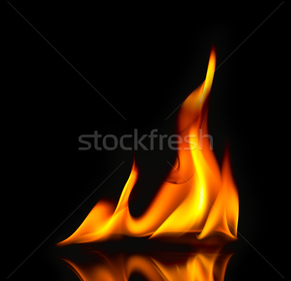 Stock photo: Fire Flames / with reflection / beautiful modern style