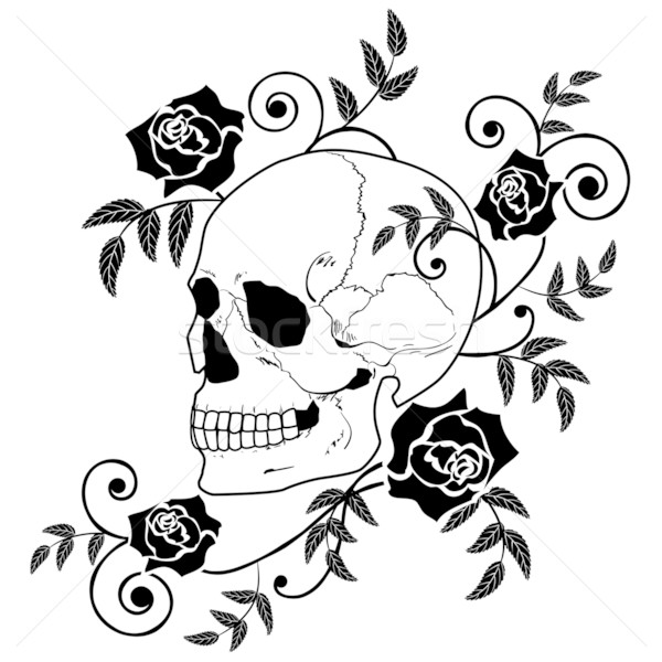 Black Rose And Skull Wallpaper Skulls And Roses Wallpaper