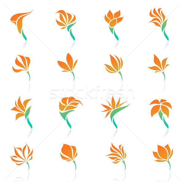 Stock photo: Tropical flowers. Vector logo template set. Elements for design.